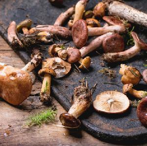 Co zrobić z grzybów? Grzyby kiszone - przetwory na zimę