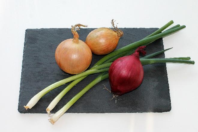 Odmiany cebuli: czym się różnią cebula czosnkowa, cukrowa, czerwona i szalotka? [WIDEO]